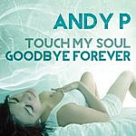 Andy P. Touch My Soul - Goodbye Forever - Ep