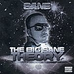 S.A.N.E The Big Sane Theory