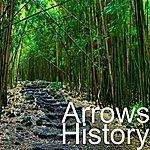 The Arrows History