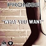 Promise What You Want