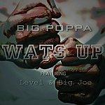Big Poppa Wats Up (Feat. Level & Big Joe)
