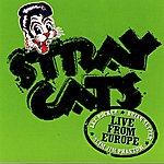 Stray Cats Live In Europe - Hamburg 7/16/04