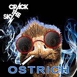 Crack The Sky Ostrich