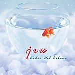 Iris Cedro Del Libano (Single)
