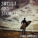 Mike Gibbons Swells And Storms