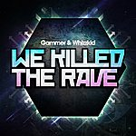 Gammer We Killed The Rave