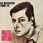 Palito Ortega Palito Ortega Cronología - Un Muchacho Como Yo (1967)