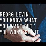Georg Levin You Know What You Want But You Won't Get It