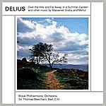 Royal Philharmonic Orchestra Delius: In A Summer Garden