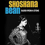 Shoshana Bean Blood From A Stone