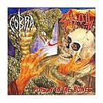 Cobra Poison In The Bones