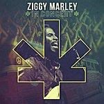 Ziggy Marley Ziggy Marley In Concert