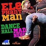 Elephant Man Dancehall Madness - Single