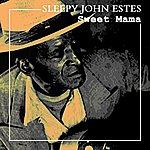 Sleepy John Estes Sweet Mama