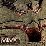 Polaris Reactivity
