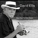 David Ellis Group Slow Your Current Down