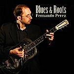 Fernando Perez Blues & Roots