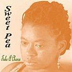 SweetPea Take A. Chance