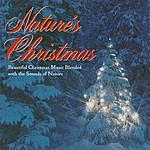 Nature Sounds Nature's Christmas