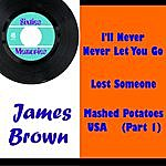 James Brown I'll Never, Never Let You Go
