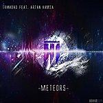 Trinidad Meteors
