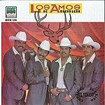 Los Amos De Nuevo León Los Dos Michoacanos