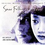 James Newton Howard Snow Falling On Cedars (Original Motion Picture Soundtrack)