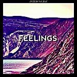 The Feelings Intercourse