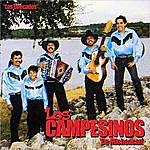 Los Campesinos De Michoacan Los Checados