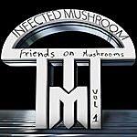 Infected Mushroom Friends On Mushrooms, Vol.1