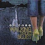 Ed Maly Walking Shoes Blues
