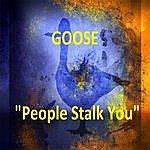 Goose People Stalk You