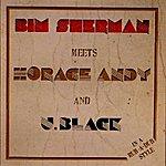 Bim Sherman In A Rub-A-Dub Style
