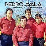 Pedro Ayala Caminito De Amor