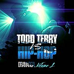 Todd Terry Todd Terry Vs Hip Hop (Dramatical Volume 1)