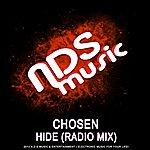 Chosen Hide (Radio Mix)