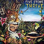 Five Stone Thrive
