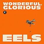 Eels Wonderful, Glorious (Deluxe Version)