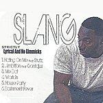 Slang Strictly Lyrical And No Gimmicks (Ep)
