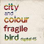 City and Colour Fragile Bird - Digital 45