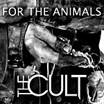 The Cult For The Animals