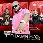 Big A Too Damn Fly (Feat. Big Chief And Esg) (Single)