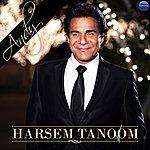 Andy Harsem Tanoom (Single)