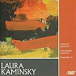 P.I. Music Of Laura Kaminsky