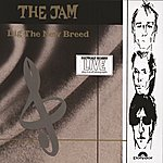The Jam Dig The New Breed (International Version)