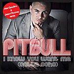 Pitbull I Know You Want Me (Calle Ocho) [Alex Gaudino & Jason Rooney Remix]