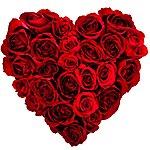Colin Lloyd Tucker Feel The Love