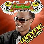 Wayne Wonder Penthouse Flashback Series (Wayne Wonder) Vol. 1