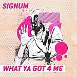 Signum What Ya Got 4 Me (Lee Haslam Remix)