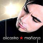 Alicastro Mañana